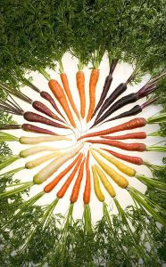 Carrots-of-Many-colours-Wikimedia-Commons-Anna-Jackowiak-Why-should-I-eat-more-fibre-Reduce-Risk-of-heart-disease